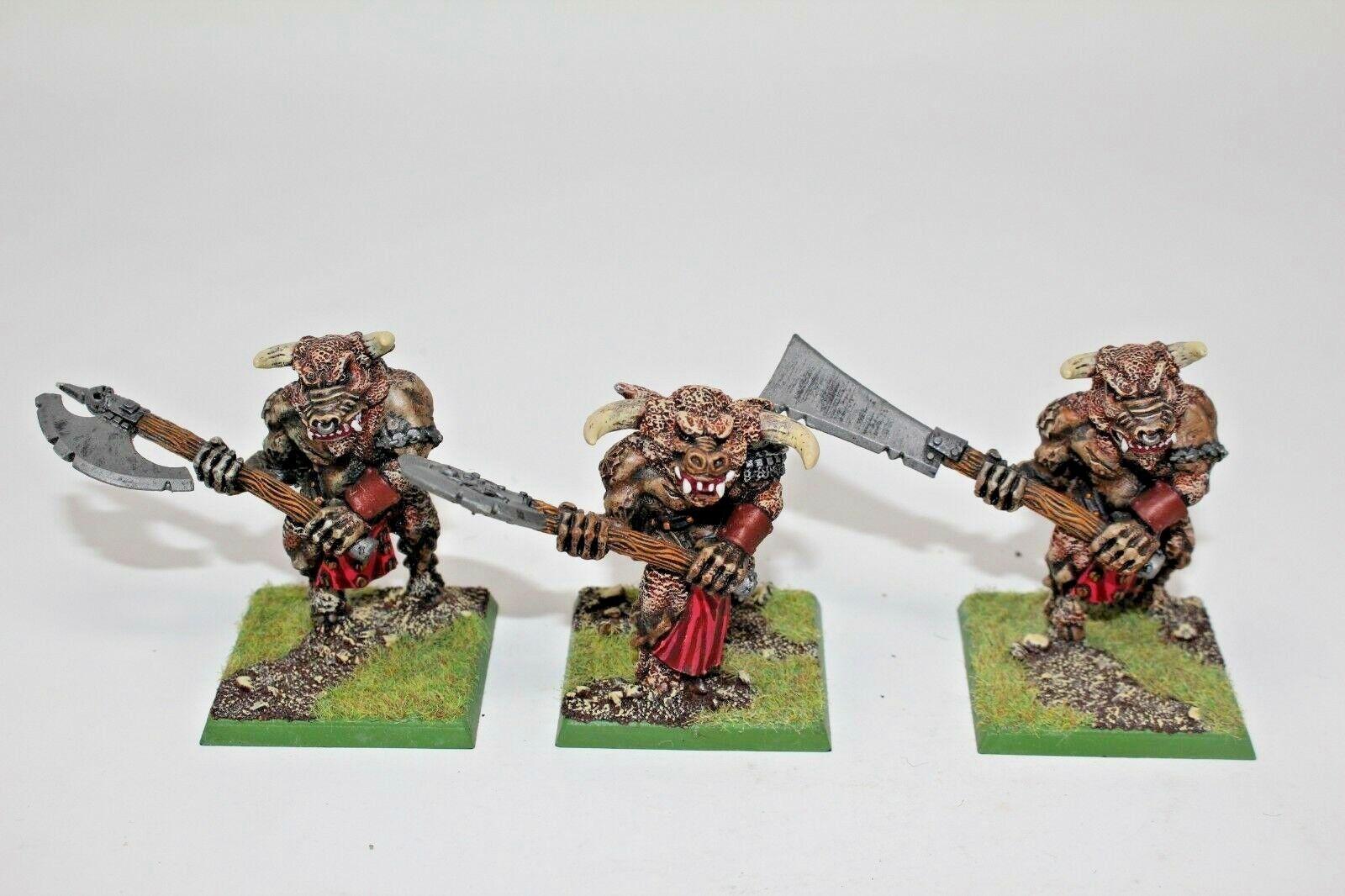 Warhammer Beastmen Bullgors Metal Well Painted - JYS38