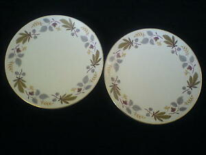MYOTTS-039-China-Lyke-039-The-Everglades-L355-9-inch-round-Cake-Serving-Plates-x-2