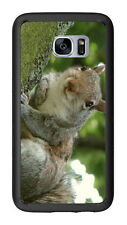 Squirrel For Samsung Galaxy S7 G930 Case Cover by Atomic Market