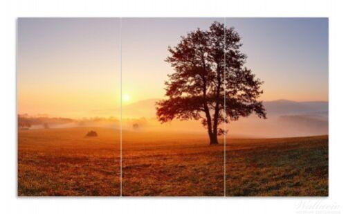 Sonnenaufgang Wiese Nebel Wallario Herdabdeckplatte 3-teilig aus Glas 90x52cm