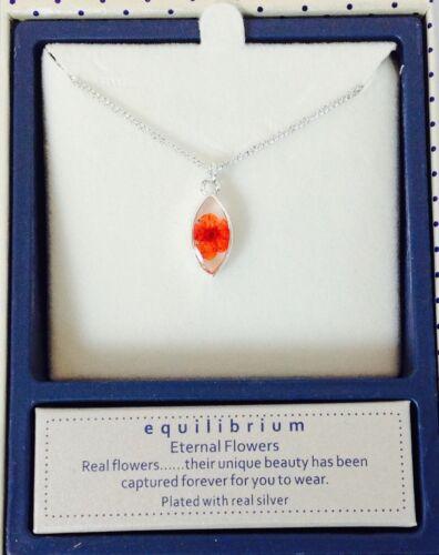 Equilibrio Plateado Collar Colgante Real Flores Eterna-Rosa 289370
