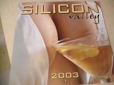 "2003 Silicon Valley Sexy Busty Big Boobs Calendar by Glenn Grainger 12""X12"""