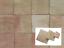 m-Cotto-Platten-15x15cm-Terrakotta-Fliese-Kacheln-Bodenplatten-Tonfliese-natur Indexbild 1