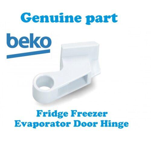 Blomberg TSM1541 TSM1541P Réfrigérateur Congélateur Ice évaporateur Charnière de porte