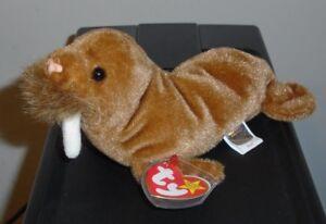 Ty Beanie Baby ~ PAUL the Walrus (7 Inch) MWMT 8421042487  ebfa2cc8cd1