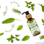 Hair-Growth-Oil-100-Natural-Organic-Herb-Treatment-For-All-Hair-Types-100-amp-200ml thumbnail 12