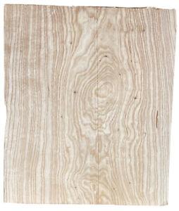 Swamp-Ash-1-pc-lightweight-Guitar-blk-kiln-dried-17-x-13-034-x-1-90-034-8-7-LB-White
