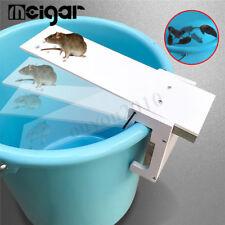 Marche Planche Piège à Rats Nasse Souris Nuisibles Souricière Mouse Mice Trap