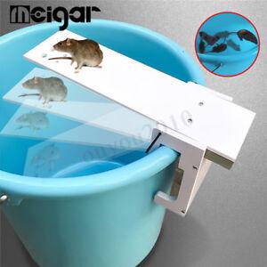 Marche-Planche-Piege-a-Rats-Nasse-Souris-Nuisibles-Souriciere-Mouse-Mice-Trap
