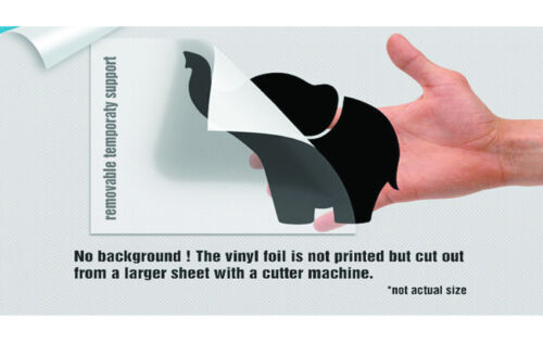 The Last Airbender Aang Avatar Poster Sticker Wall Vinyl Decal Art Decor TK312