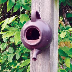Superior Image Is Loading Teapot Nester Robin Wild Bird House Garden Nesting