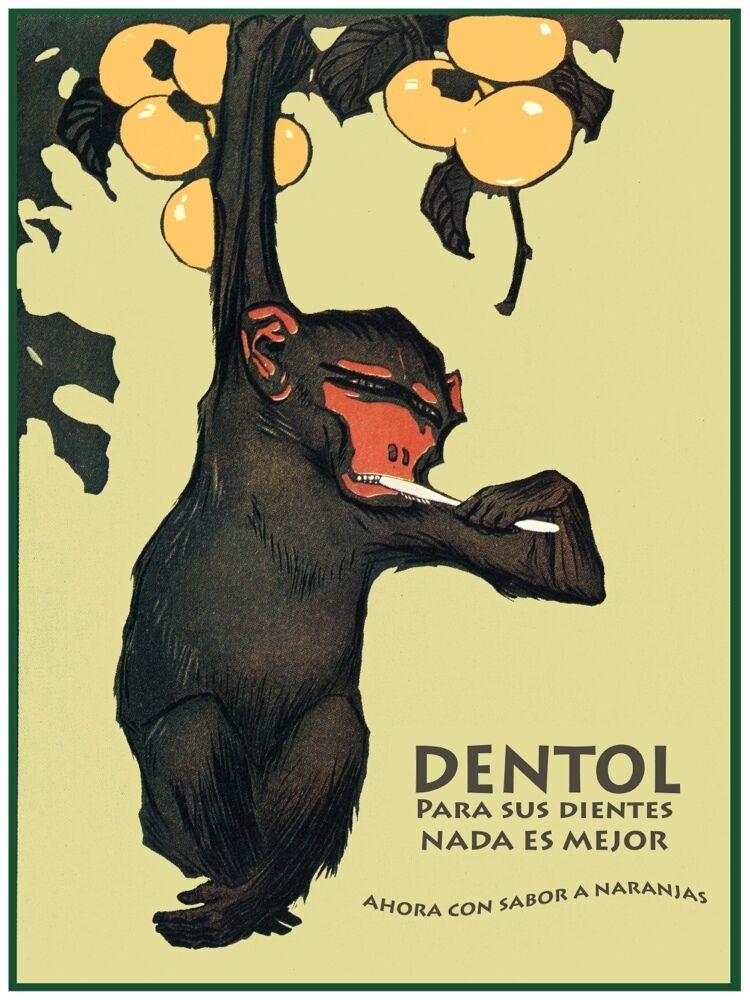 4354.Dentol.hanging monkey brushing teeth.arancias.POSTER cor Home Office art