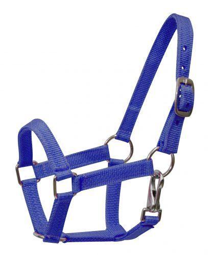 BLUE MINI Size Western Nylon Halter w// Nickel Plated Hardware NEW HORSE TACK!!