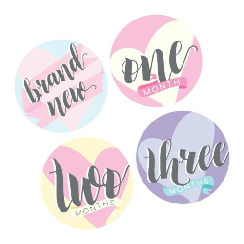 13 Stickers Months one Bobee Baby Girl Milestone Stickers Memory Props Twe...