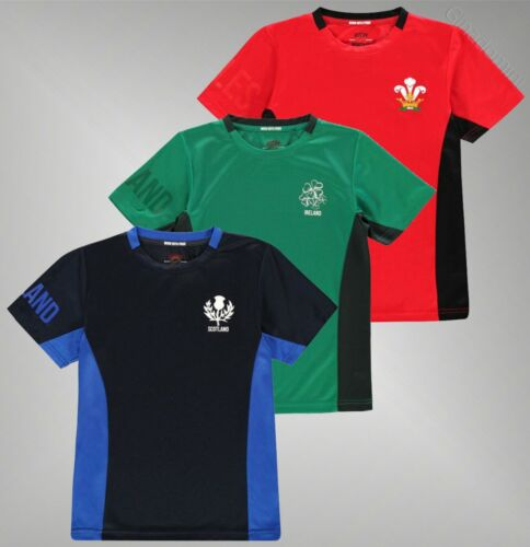 Boys Branded Team Rugby Short Sleeves Printed Club Crest Top Poly T Shirt 7-13