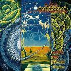 Ashore the Celestial Burden von Dark Millennium (2015)