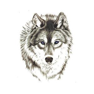 Waterproof Temporary Tattoo Stickers 3d Wild Cool Wolf Animals