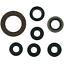 YZ250-ENGINE-REBUILD-KIT-1996-PISTON-KIT-CONROD-KIT-GASKETS-SEALS-MAINS-YAMAHA thumbnail 2
