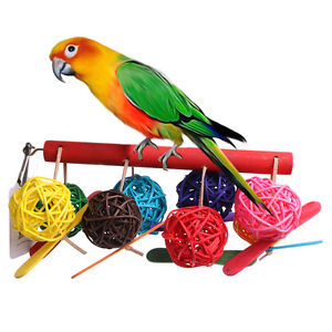 Pet-Toy-Bell-Balls-Bird-Ball-for-Budgie-Finch-Parrot-Cockatiel-Chew-Fun-Toys