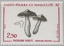 ST. PIERRE MIQUELON SPM 1989 569 489 Fungus Pilze Mushrooms Flora Nature MNH