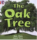 The Oak Tree: Band 02B/Red B by Anna Owen (Paperback, 2005)