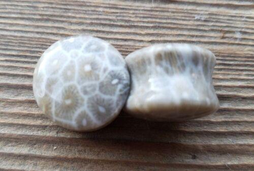 Par de coral fósil tapones medidores Cuerpo Joyería doble abocinado