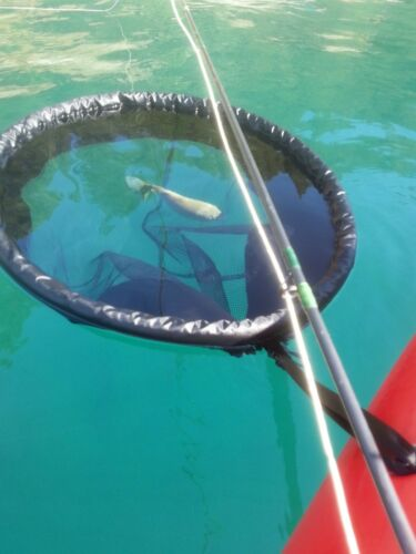 WindPaddle Floating Fishing Net