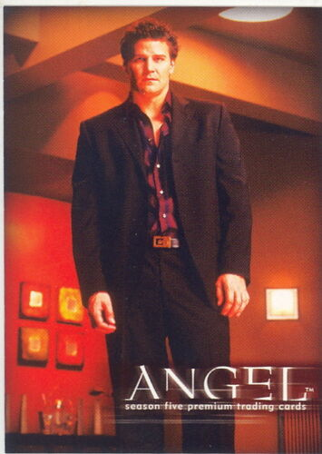 ANGEL SEASON 5 2004 INKWORKS PROMO CARD A5-UK