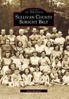 Sullivan County Borscht Belt by Irwin Richman (Paperback / softback, 2001)