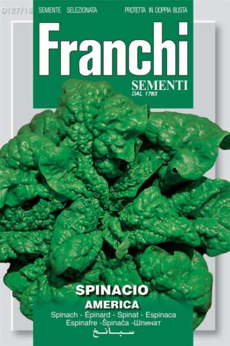 Franchi Seeds of Italy Seeds Spinach America