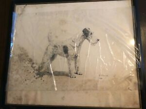 Marguerite-Kirmse-VERY-RARE-039-Wire-Fox-Terrier-Original-Etching-Print-Signed