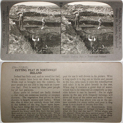 Keystone Stereoview of Cutting Peat in Northwest IRELAND From RARE 1200 Card Set