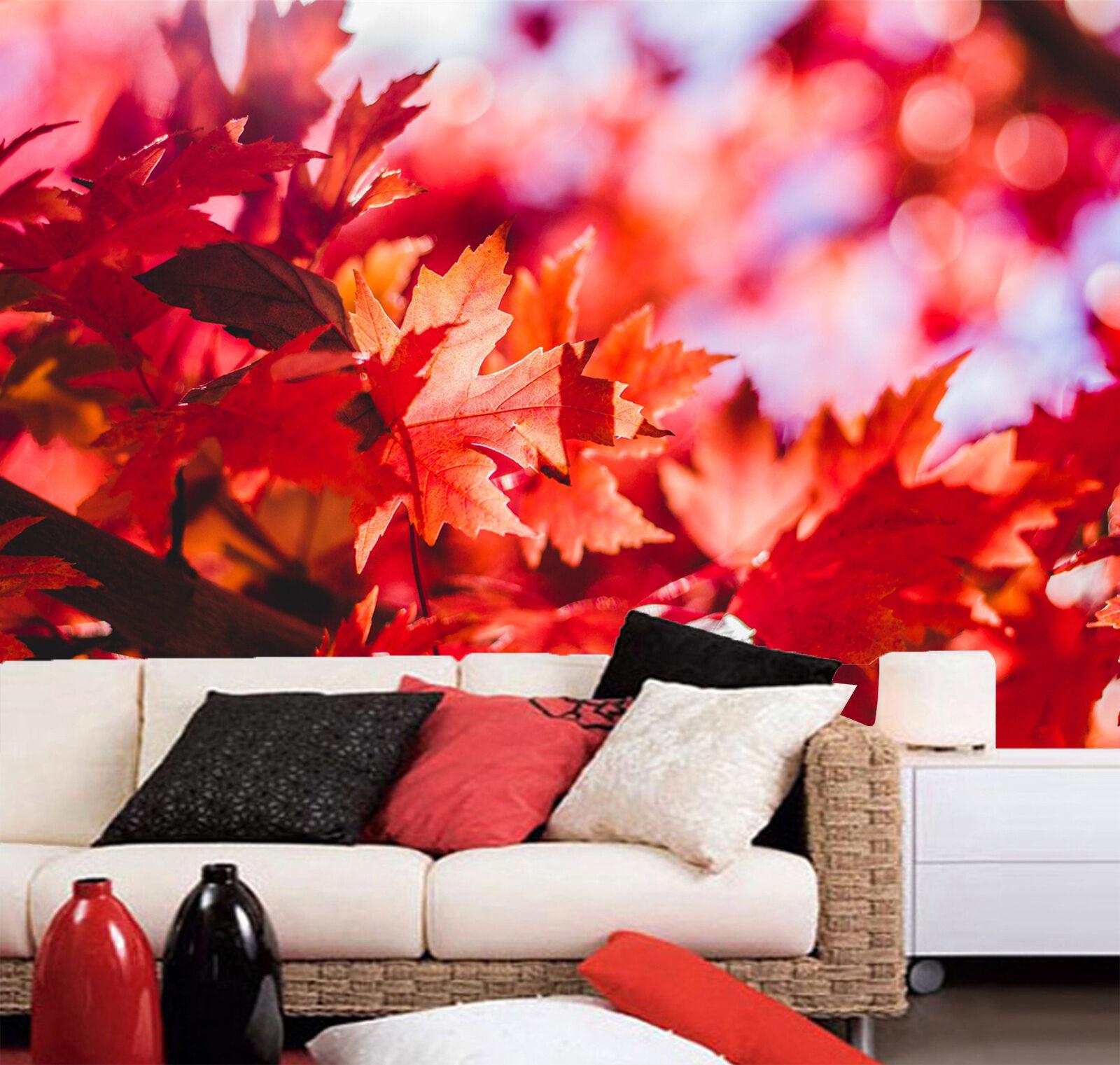 3D ROT Maple Leaf 946 Wallpaper Mural Paper Wall Print Wallpaper Murals UK