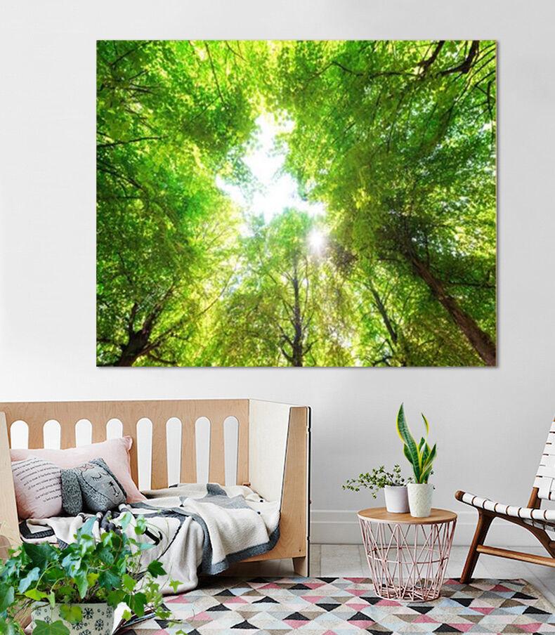 3D Sonnenschein Grün Hain 853 Fototapeten Wandbild BildTapete AJSTORE DE Lemon | Berühmter Laden  | Nicht so teuer  | Lass unsere Waren in die Welt gehen