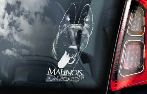 Car Window Sticker Belgian Malinois on Board Mechelse Dog Sign Decal V05