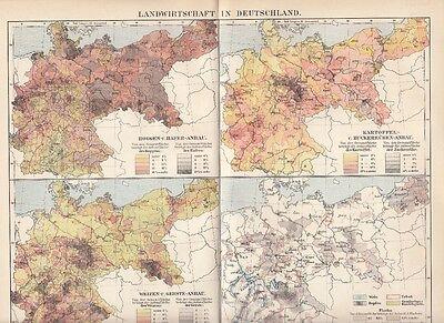 Landwirtschaft In Deutschland Original Alte Landkarte 1899 Karte