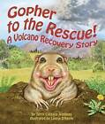 Gopher to the Rescue!: A Volcano Recovery Story by Terry Catasus Jennings (Paperback / softback, 2012)
