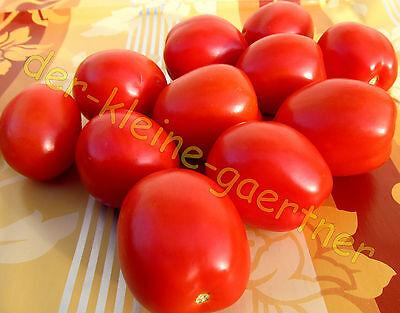 10  Tomatensamen  RIO GRANDE   EIERTOMATE    Tomaten   Samen  Tomaten