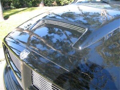 For 2005 Dodge Ram 1500 T-Rex Hood Scoop Grille Insert DJTM