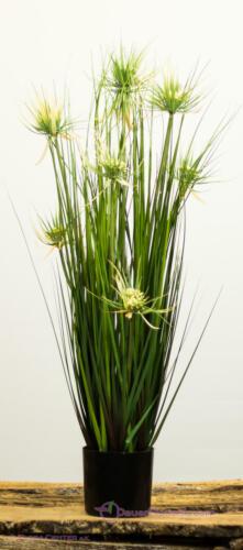 Zyperngras im Topf 82cm Nilgras Schilfgras Gras Kunstpflanze künstliche Gräser
