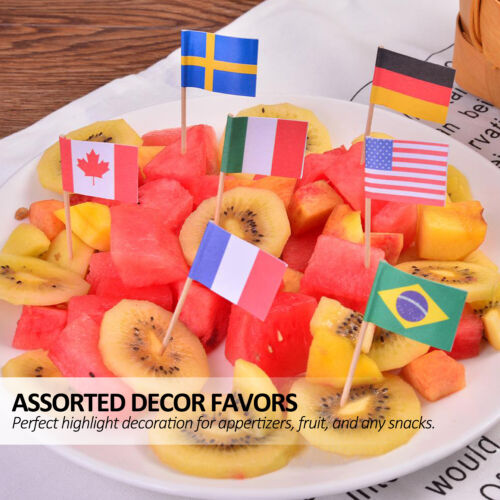Anley Assorted 100 Different Countries Toothpick Flag Double Sided /& Smooth Pick