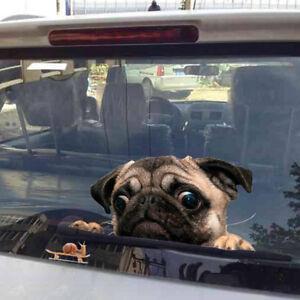 Etiqueta-engomada-ventana-coche-del-caracol-de-observacion-del-perro-del-pug-3D