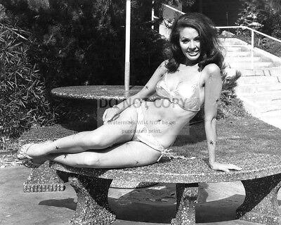 8X10 PUBLICITY PHOTO CC548 ACTRESS MARY ANN MOBLEY