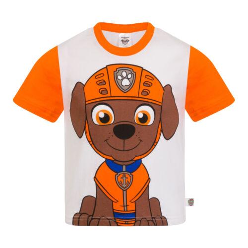 Paw PATROL Ufficiale Regalo Ragazzi Bambini Personaggio T-shirt Rocky chase rubble Skye