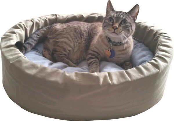 Organic & Natural Small Dog Cat Bed with no  recycled  materials