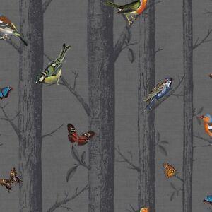 Multi Oiseaux Sur Noir Bouleau Arbre Papier Peint Epping Foret Avec