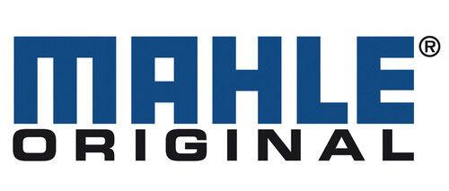 Engine Piston Set Mahle 224-3413WR.020