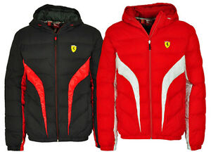 puma scuderia ferrari formel 1 jacke padded jacket rot. Black Bedroom Furniture Sets. Home Design Ideas