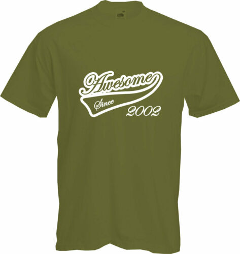 Present Gift AWESOME SINCE 2002 2020 NEW Fun 18th BIRTHDAY T Shirt