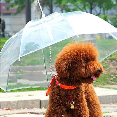 Transparent Pet Dog Cat Umbrella with Built-in Leash Portable Puppy Dry in Rain